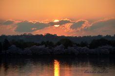 Sun setting at the Tidal Basin, Washington, DC #Washingtondcrealestate