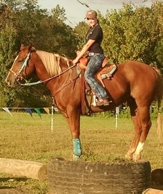 I got my barrel horse on a tire that is just about knee high well for me I'm pretty tall