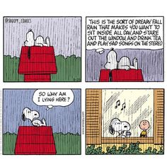 Shared on Instagram by snoopy_snaps