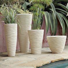 Looking for ideas for your home: สวนที่แขวนอยู่ในโถแก้ว โดย Shane Powers