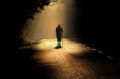 Walking Tall ! by Rakesh Rocky, via 500px