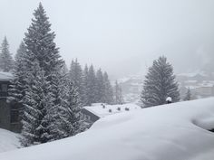 Madesimo 2013 (Italy) Italy, Snow, Spaces, Outdoor, Outdoors, Italia, Outdoor Games, The Great Outdoors, Eyes