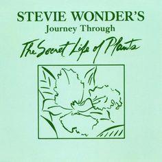 Stevie Wonder - Outside my window (Journey through the secret life of plants - Tamla US/1979)