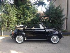 73 1.6 Beetle Convertible