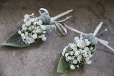 The Groom's Men had Boutonnieres of Stachys and Gypsophilia