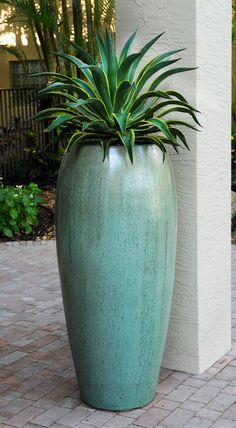 A beautiful, four foot tall celadon pot is planted with an agave in this Delray Beach, Florida container garden. Designed by Pamela Crawford, who designs landscapes throughout Palm Beach County. Container Design, Container Plants, Container Gardening, Outdoor Planters, Garden Planters, Planter Pots, Tall Plants, Indoor Plants, Potted Plants