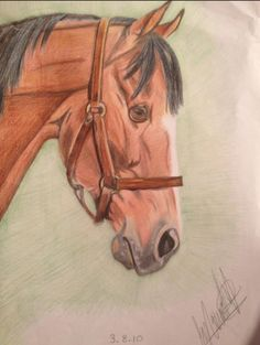 Colour pencil drawing of a horse, completed 2010. Drawing Commissions, Pencil Drawings, Colored Pencils, My Etsy Shop, Horses, Colour, Artist, Artwork, Colouring Pencils