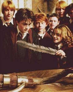 harry potter, hp, hermione geanger, ron weasley, fred & george weasley, gryffndor