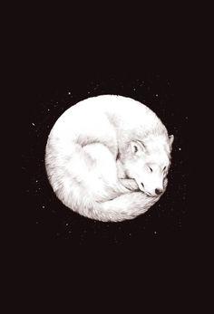 Wolf Moon    by Daniel Teixeira - MySoulSearch