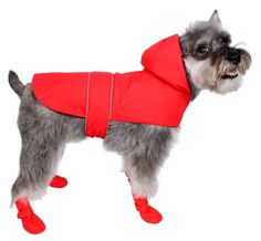 The 10 Great Products You and Your Dog Need This Winter | Dog Lovers Today