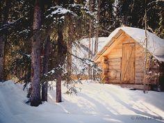Dawson City - Le 'Benson Creek Wilderness Lodge', ma cabane au Canada - Bon plan voyage Canada