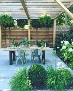 Gorgeous patio area