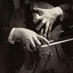 Mstislav Rostropovich's hands (b/w photo)