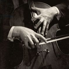 Mstislav Rostropovich's hands (b/w photo)