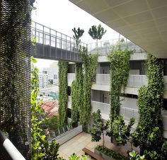 School of the Arts by WOHA