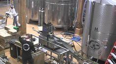 Talking Virginia Hard Cider