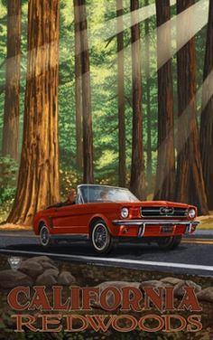 CA Redwoods poster neste link: http://www.emanuelnetwork.com/