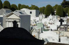 Punta Arenas Cementerio - Punta Arenas, Chile