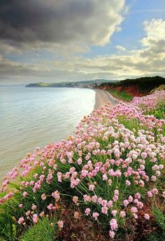 Glorious Devon, England We need the vision to see what is at our feet, as well as what lies ahead.