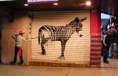 Esquina Tijuana: donkey/zebra