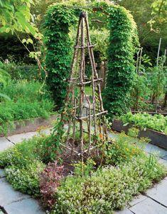 The Complete Kitchen Garden: An Inspired Collection of Garden Designs and 100 Seasonal Recipes: Ellen Ecker Ogden: 9781584798569: Amazon.com: Books