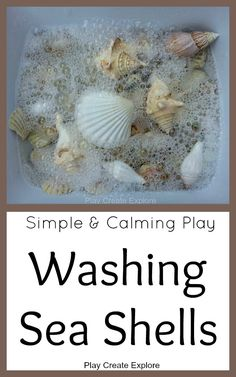 Play Create Explore: Washing Sea Shells: Simple and Calming Play Montessori Toddler, Montessori Activities, Toddler Activities, Learning Activities, Dementia Activities, Beach Activities, Indoor Activities, Family Activities, Sensory Bins