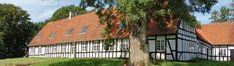 Deck, Outdoor Decor, Plants, Home Decor, Decoration Home, Room Decor, Front Porches, Plant, Home Interior Design