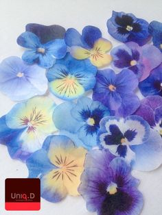 30 edible pansy flowers  edible cupcake decoration  by uniqdots, $22.00