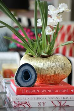 Hi Sugarplum | Use unexpected vessels as planters. How to style your coffee table.
