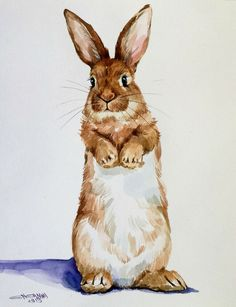Watercolor Pictures, Watercolor Animals, Watercolor Paintings, Animal Drawings, Cute Drawings, Rabbit Art, Bunny Rabbit, Bunny Images, Bunny Painting