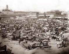 Texas 1889