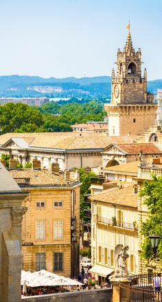Avignon, la cité des papes