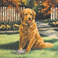 Linda Picken Art Studio - Dog Gallery
