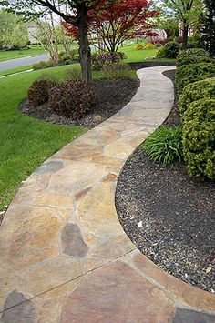 Liquid Stone Concrete Designs