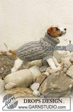 вязаный спицами свитер для собачки