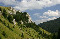 National Park Kopaonik