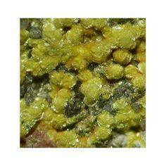 Weeksite, K2(UO2)2Si6O15•4(H2O), Topaz Mountain, Juab County, Utah, USA. Yellow spherical aggregates of weeksite on matrix