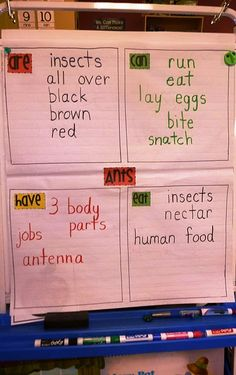 A Kindergarten Graphic Organizer