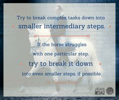 """Try to break complex tasks down into smaller intermediary steps. If the horse struggles with one particular step, try to break it down into even smaller steps, if possible."" - Thomas Ritter artisticdressage.com"