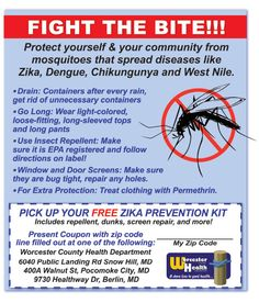 On the Shore, we all know what warm weather brings…. Mosquitoes. Mosquitoes spread diseases like Zika, Dengue, Chikungunya & West Nile. Fight the bite with help from the Worcester County Health Department! Redeem this coupon to recieve your FREE Zika Prevention Kit from the Worcester County Health Department & check out the tips and tricks below for prevention!  www.frugals.biz