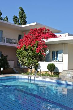 Cormoranos Apartments || the family-run Cormoranos Apartments are set less than 50 metres from the long stretch of sandy beach of Nopigia. They offer a swimming pool and a children's pool.