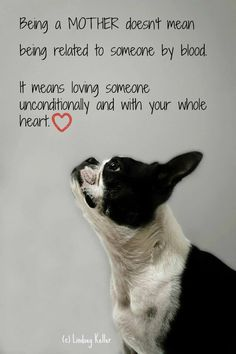 Happy Mother's Day to all Boston Terrier Moms!