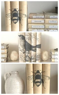 Innovative!  I don't like the latest fad of turning books on a shelf pages out, and I don't much like covering them with neutral paper, but this is an interesting and innovative idea...