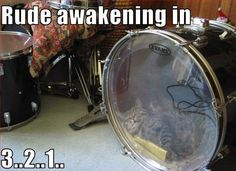 Cat sleeping - rude awakening in 3..2..1