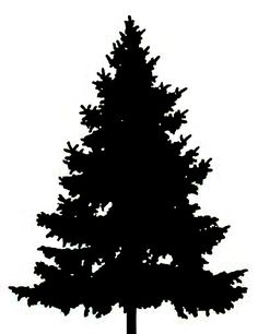 Tree Silhouette Clip Art Clipart-fir tree January