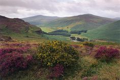 Wicklow Mountains National Park -Ireland