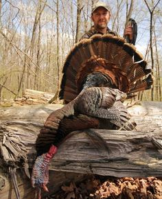Turkey Hunting Tips: Winter Scouting for Better Spring Hunting | Field & Stream