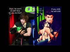 Harry *umm...so, basically..im just... more of a  cat person...*
