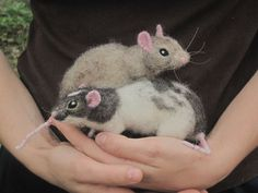 Needle felted rats poseable life sized pets by Ainigmati on Etsy, $145.00