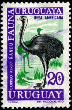 Birds Perched, Birds Flying, Birds aground - Stamp Community Forum - Page 25